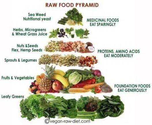 raw food pyramid Opt